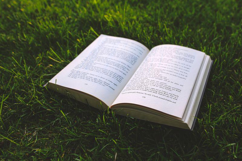 Zdjęcie książki na trawie
